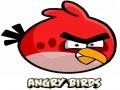 Szalone Wściekłe Ptaki (Crazy Angry Birds)