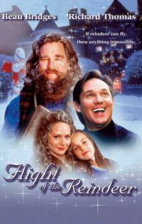 Świąteczny sekret (2000) Lektor PL